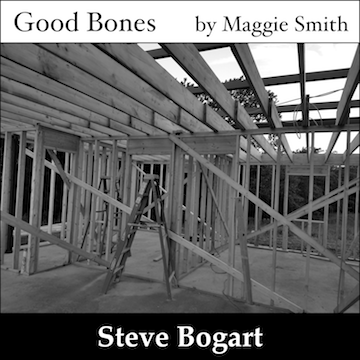 Good Bones by Steve Bogart - album art showing the unfinished frame of a house